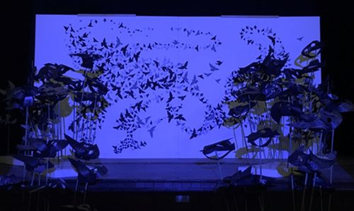 2D and 3D birds in a murmuration 2 Mary-Jane Walker
